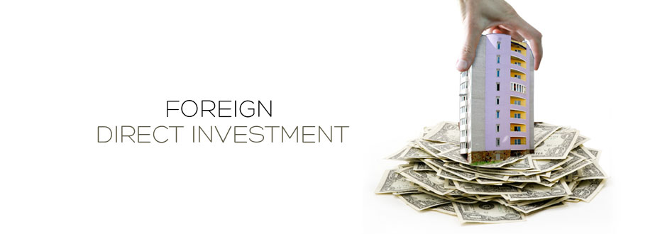 foreign direct investment fdi essay