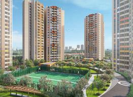 Joyville Hadapsar Annex Pune
